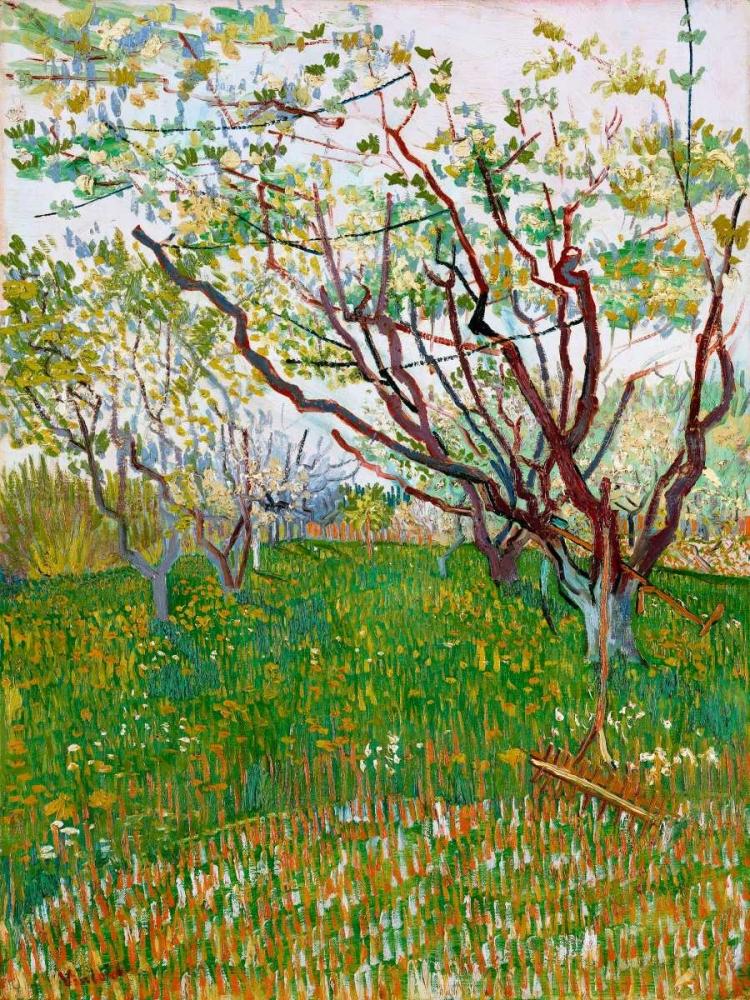 konfigurieren des Kunstdrucks in Wunschgröße The Flowering Orchard von Van Gogh, Vincent