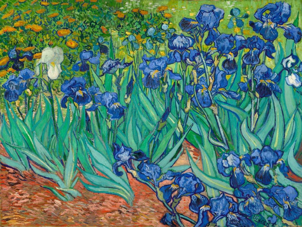 konfigurieren des Kunstdrucks in Wunschgröße Irises von Van Gogh, Vincent