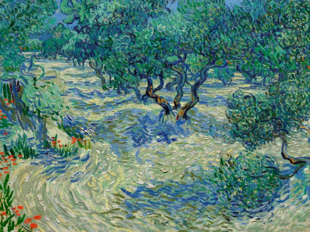 konfigurieren des Kunstdrucks in Wunschgröße Olive Orchard von Van Gogh, Vincent