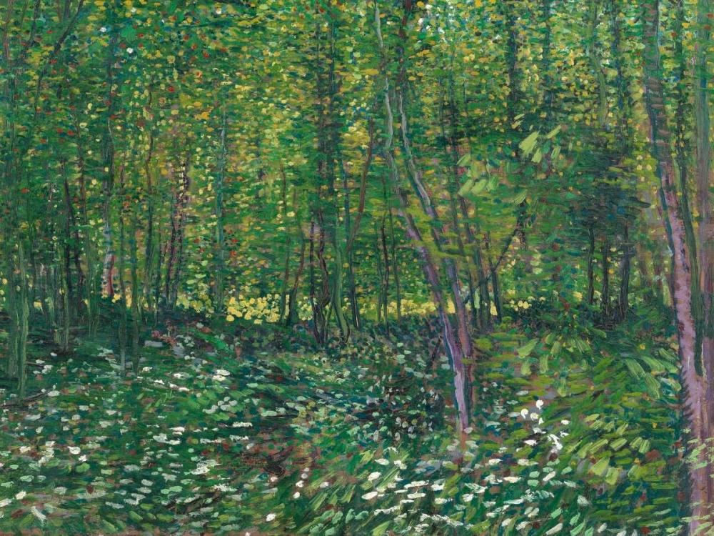 konfigurieren des Kunstdrucks in Wunschgröße Trees and undergrowth von Van Gogh, Vincent