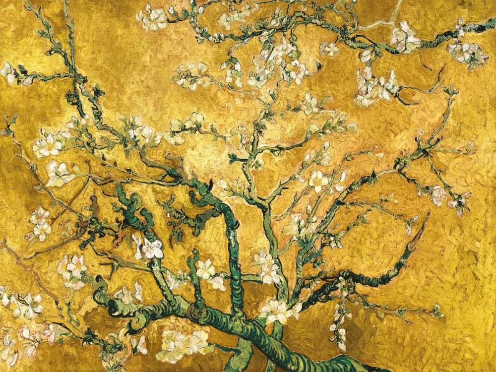 konfigurieren des Kunstdrucks in Wunschgröße Mandorlo in fiore (gold variation) von Van Gogh, Vincent