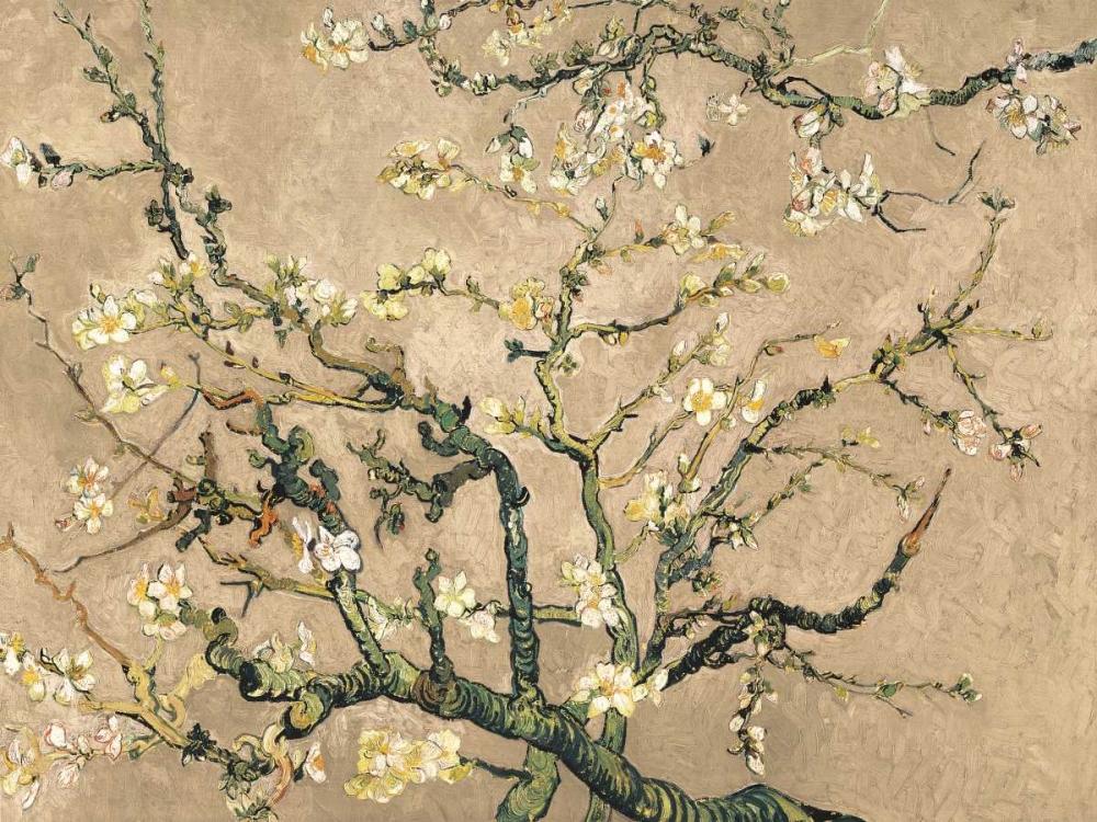 konfigurieren des Kunstdrucks in Wunschgröße Mandorlo in fiore (beige variation) von Van Gogh, Vincent