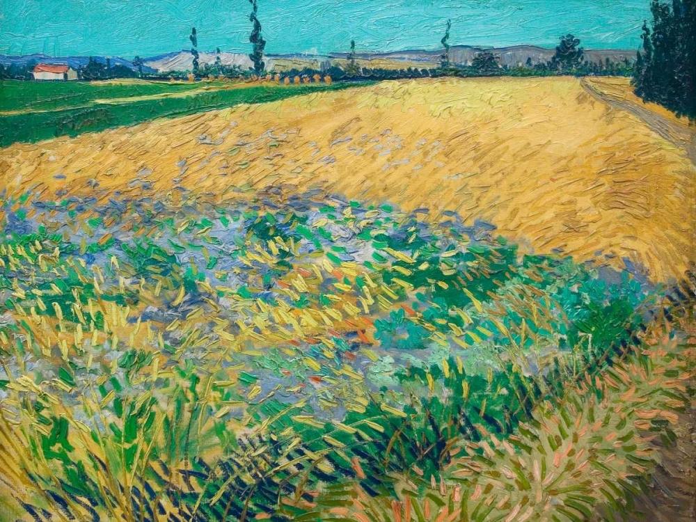 konfigurieren des Kunstdrucks in Wunschgröße Wheatfield von Van Gogh, Vincent