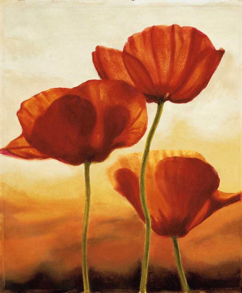 konfigurieren des Kunstdrucks in Wunschgröße Poppies in Sunlight I von Kahn, Andrea