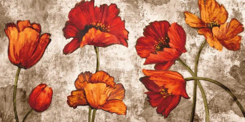 konfigurieren des Kunstdrucks in Wunschgröße Poppy Paradise von Francis, Brian