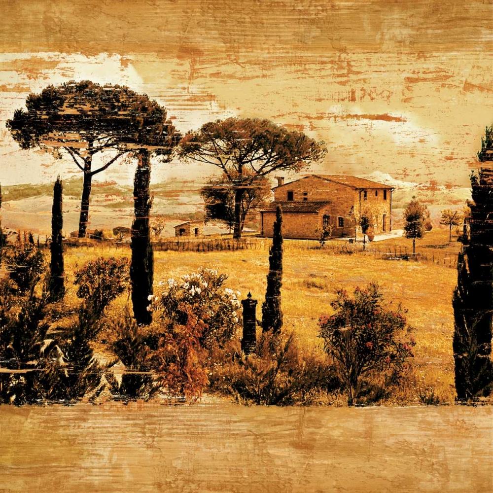 konfigurieren des Kunstdrucks in Wunschgröße Tuscan Countryside I von Floyd, Colin