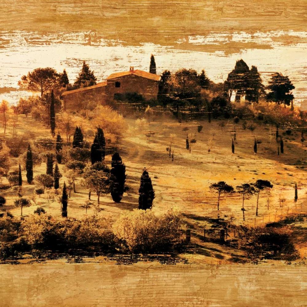 konfigurieren des Kunstdrucks in Wunschgröße Tuscan Countryside II von Floyd, Colin