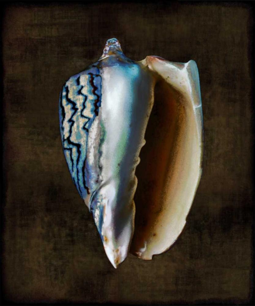 konfigurieren des Kunstdrucks in Wunschgröße Ocean Treasure I von Kelly, Caroline