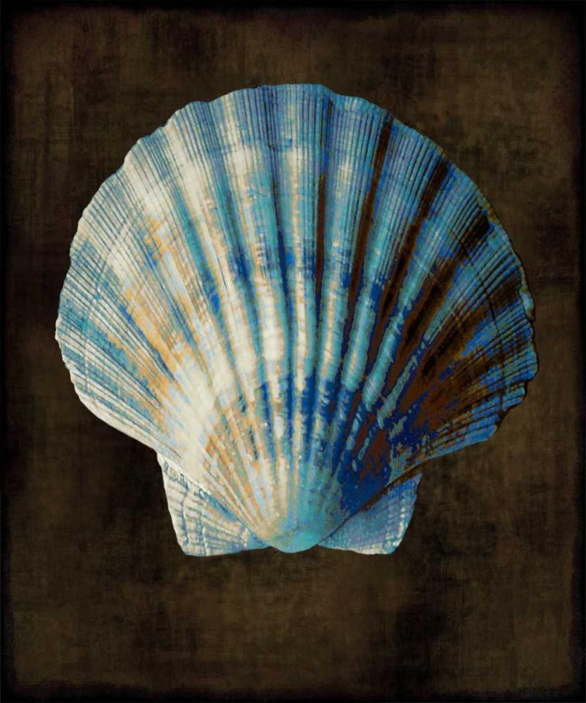 konfigurieren des Kunstdrucks in Wunschgröße Ocean Treasure II von Kelly, Caroline