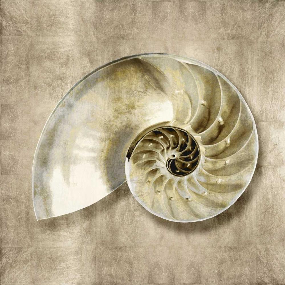 konfigurieren des Kunstdrucks in Wunschgröße Golden Sea Life IV von Kelly, Caroline
