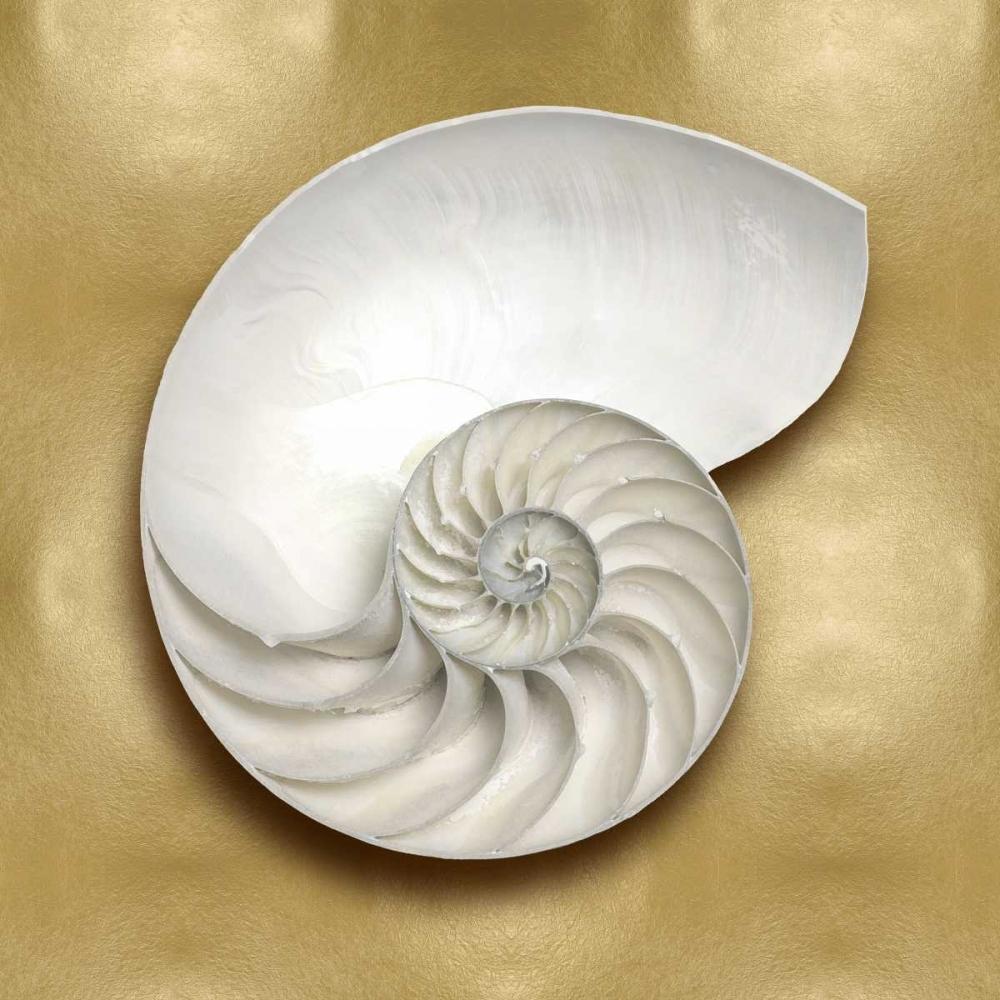 konfigurieren des Kunstdrucks in Wunschgröße Ocean Gem on Gold II von Kelly, Caroline