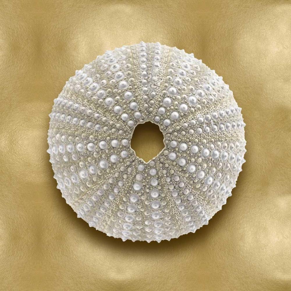 konfigurieren des Kunstdrucks in Wunschgröße Ocean Gem on Gold V von Kelly, Caroline