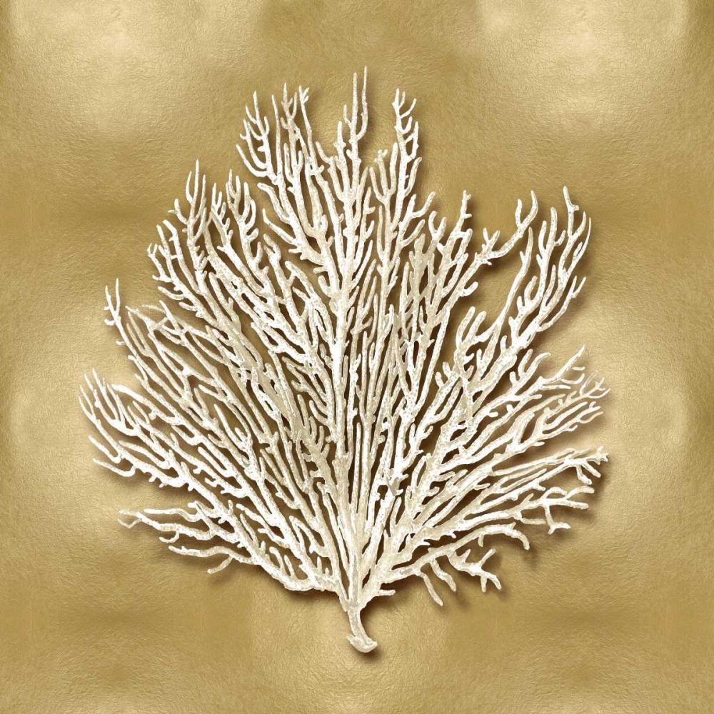 konfigurieren des Kunstdrucks in Wunschgröße Sea Fan on Gold I von Kelly, Caroline
