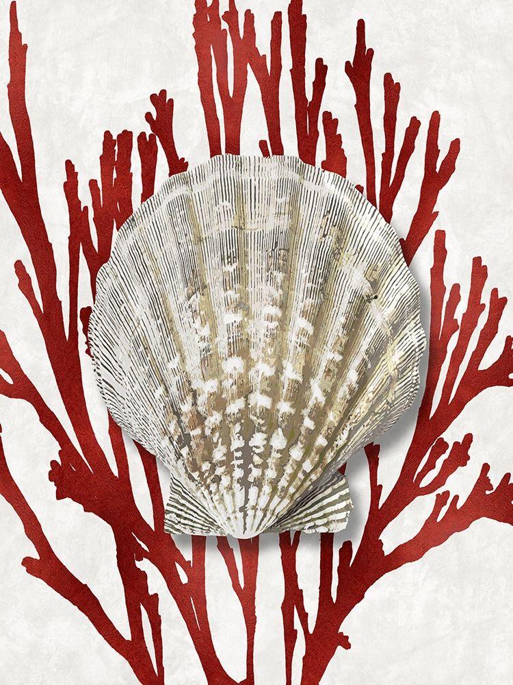 konfigurieren des Kunstdrucks in Wunschgröße Shell Coral Red IV von Kelly, Caroline