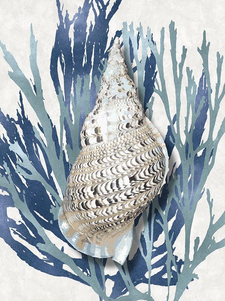 konfigurieren des Kunstdrucks in Wunschgröße Shell Coral Aqua Blue I von Kelly, Caroline