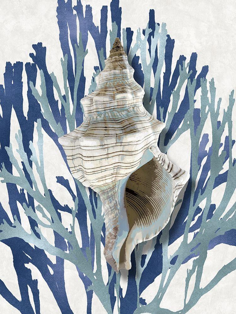 konfigurieren des Kunstdrucks in Wunschgröße Shell Coral Aqua Blue III von Kelly, Caroline
