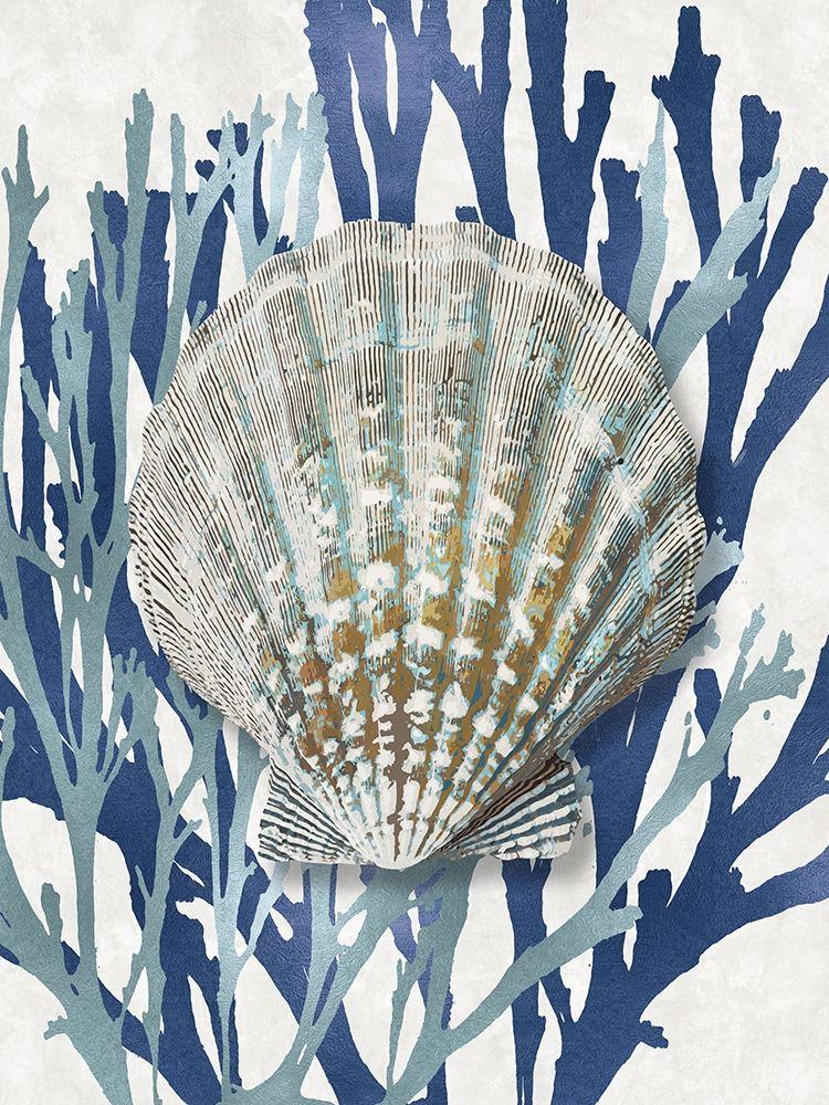 konfigurieren des Kunstdrucks in Wunschgröße Shell Coral Aqua Blue IV von Kelly, Caroline