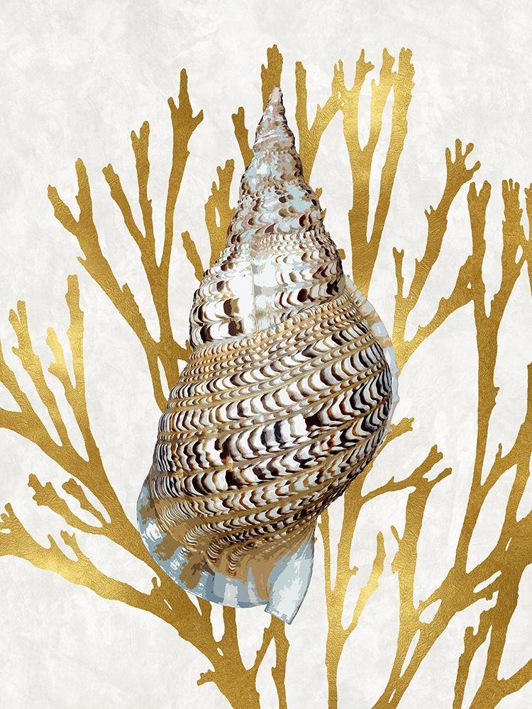konfigurieren des Kunstdrucks in Wunschgröße Shell Coral Gold I von Kelly, Caroline