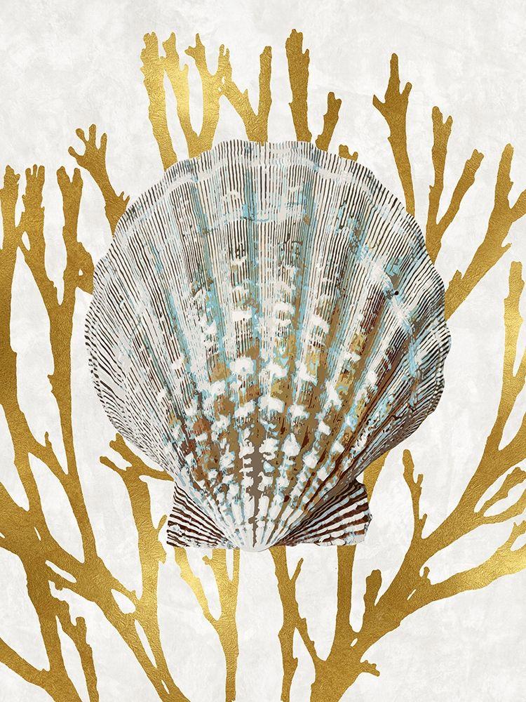 konfigurieren des Kunstdrucks in Wunschgröße Shell Coral Gold IV von Kelly, Caroline