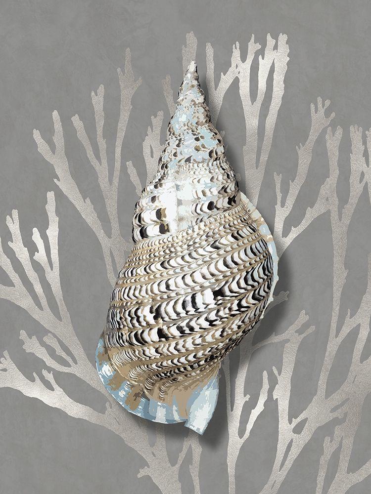 konfigurieren des Kunstdrucks in Wunschgröße Shell Coral Silver on Gray I von Kelly, Caroline