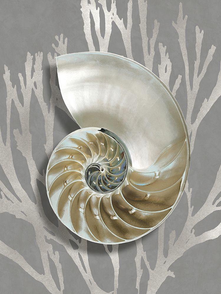 konfigurieren des Kunstdrucks in Wunschgröße Shell Coral Silver on Gray II von Kelly, Caroline