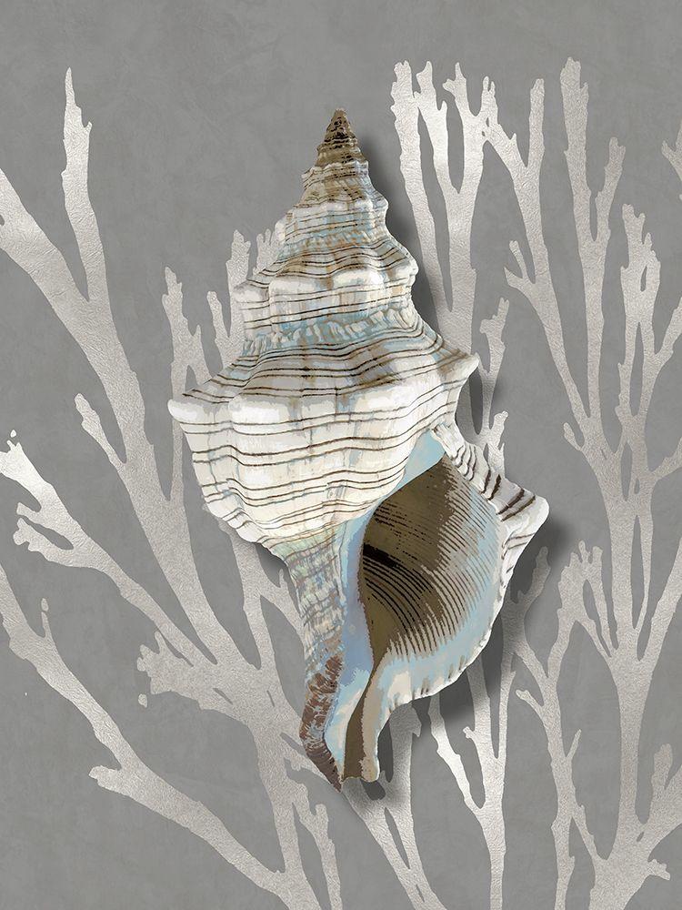 konfigurieren des Kunstdrucks in Wunschgröße Shell Coral Silver on Gray III von Kelly, Caroline