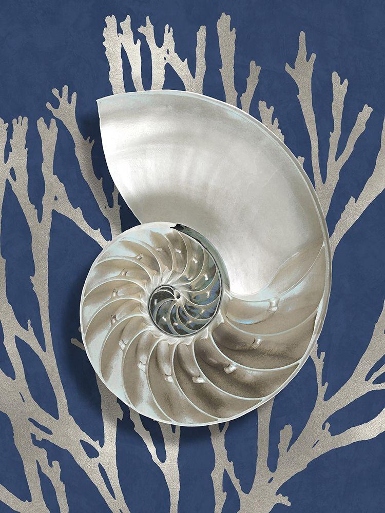 konfigurieren des Kunstdrucks in Wunschgröße Shell Coral Silver on Blue II von Kelly, Caroline