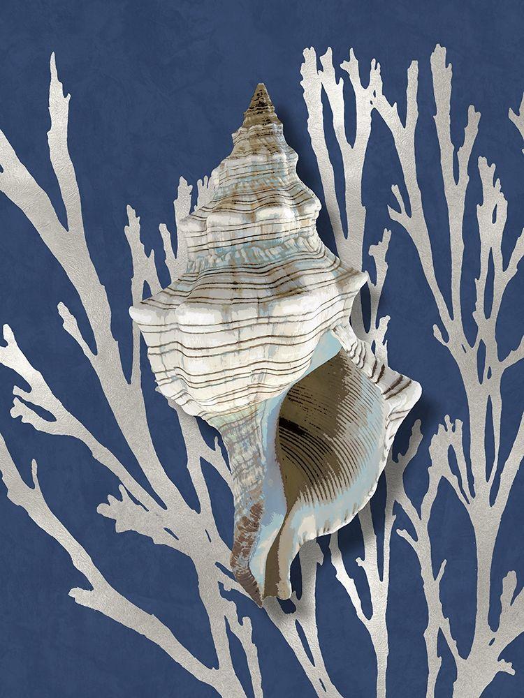 konfigurieren des Kunstdrucks in Wunschgröße Shell Coral Silver on Blue III von Kelly, Caroline