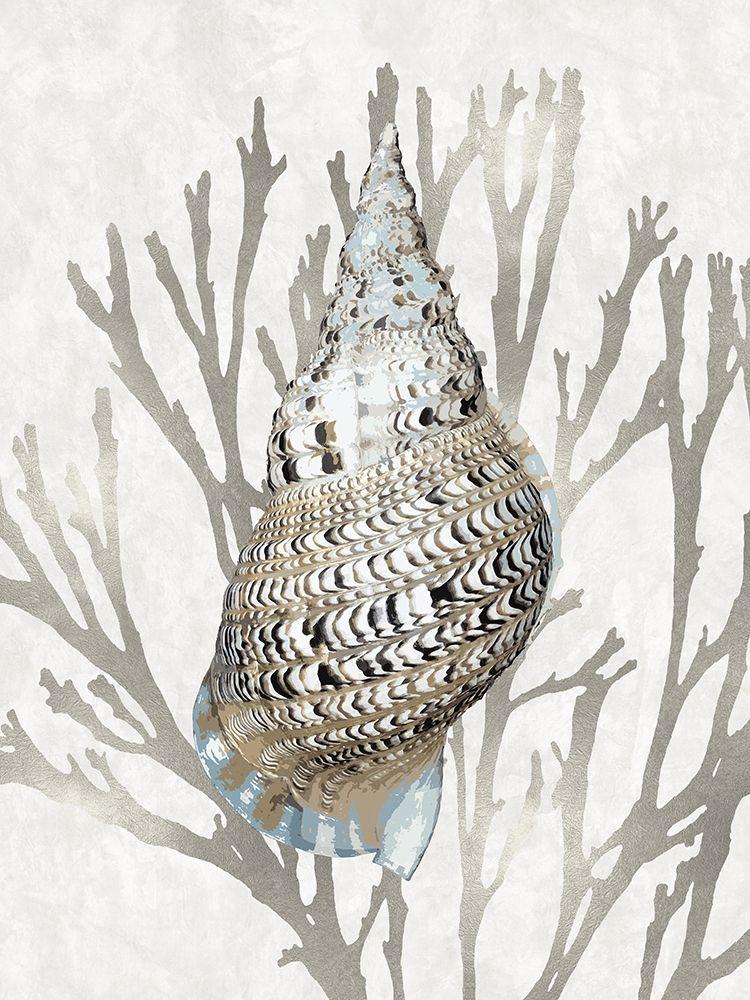 konfigurieren des Kunstdrucks in Wunschgröße Shell Coral Silver I von Kelly, Caroline