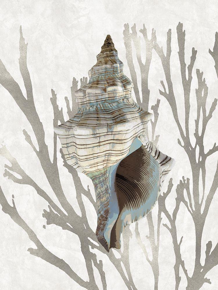 konfigurieren des Kunstdrucks in Wunschgröße Shell Coral Silver III von Kelly, Caroline