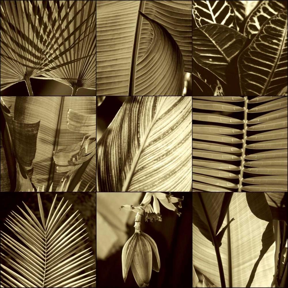 konfigurieren des Kunstdrucks in Wunschgröße Tropical Leaves I von Kelly, Caroline