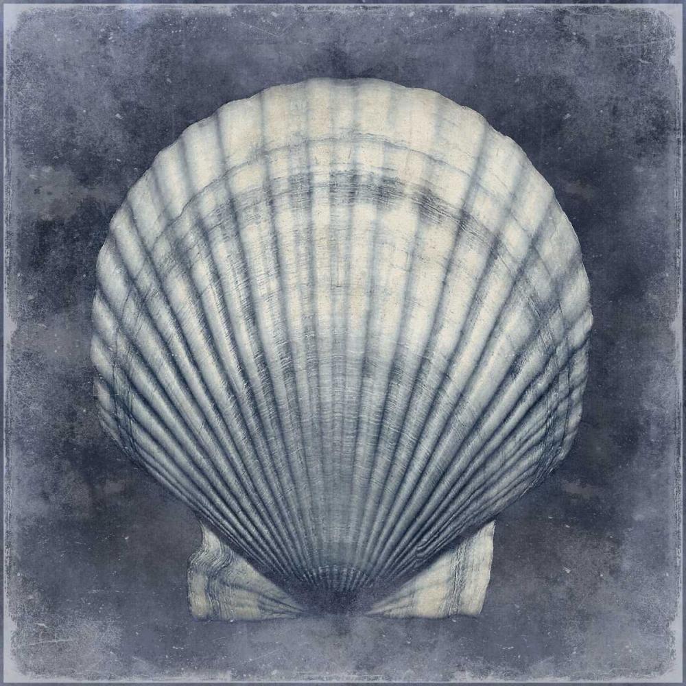 konfigurieren des Kunstdrucks in Wunschgröße Ocean Blue II von Kelly, Caroline