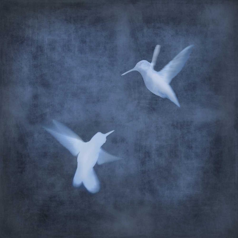 konfigurieren des Kunstdrucks in Wunschgröße Flight in Blue I von Donovan, Chris