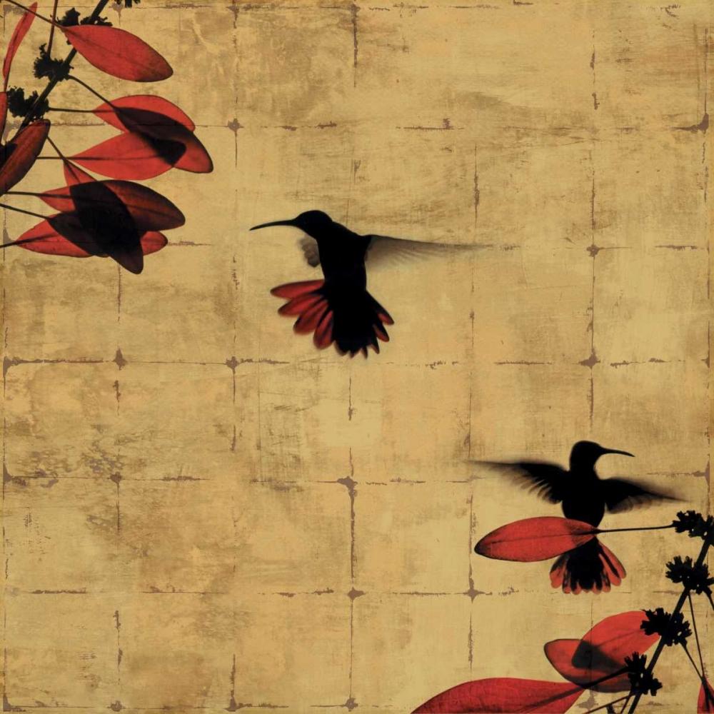 konfigurieren des Kunstdrucks in Wunschgröße Colibri I von Donovan, Chris
