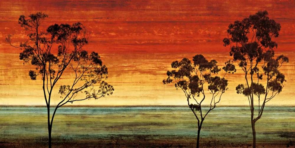 konfigurieren des Kunstdrucks in Wunschgröße Sunset Vista I von Donovan, Chris