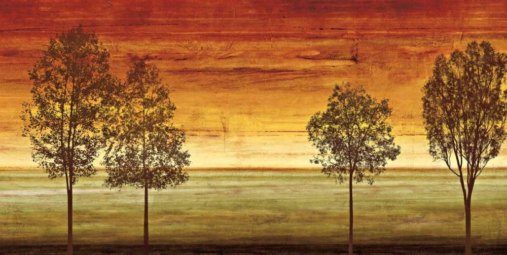 konfigurieren des Kunstdrucks in Wunschgröße Sunset Vista II von Donovan, Chris
