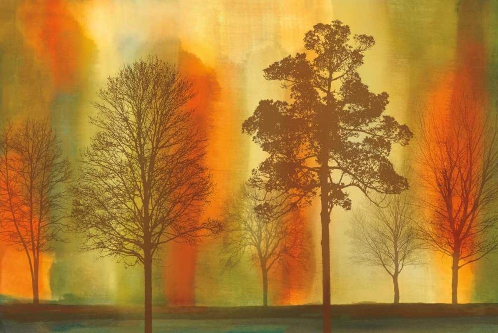 konfigurieren des Kunstdrucks in Wunschgröße Sunset I von Donovan, Chris