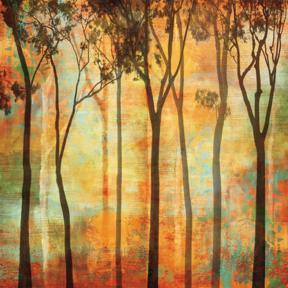 konfigurieren des Kunstdrucks in Wunschgröße Magical Forest I von Donovan, Chris
