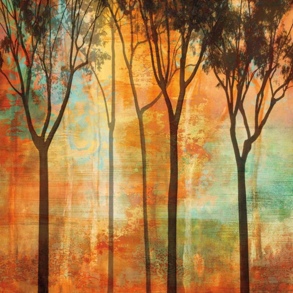 konfigurieren des Kunstdrucks in Wunschgröße Magical Forest II von Donovan, Chris