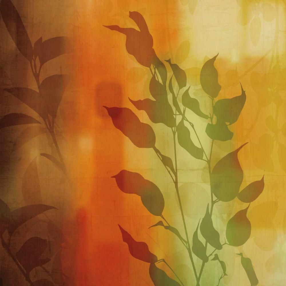 konfigurieren des Kunstdrucks in Wunschgröße Natures Glow I von Donovan, Chris