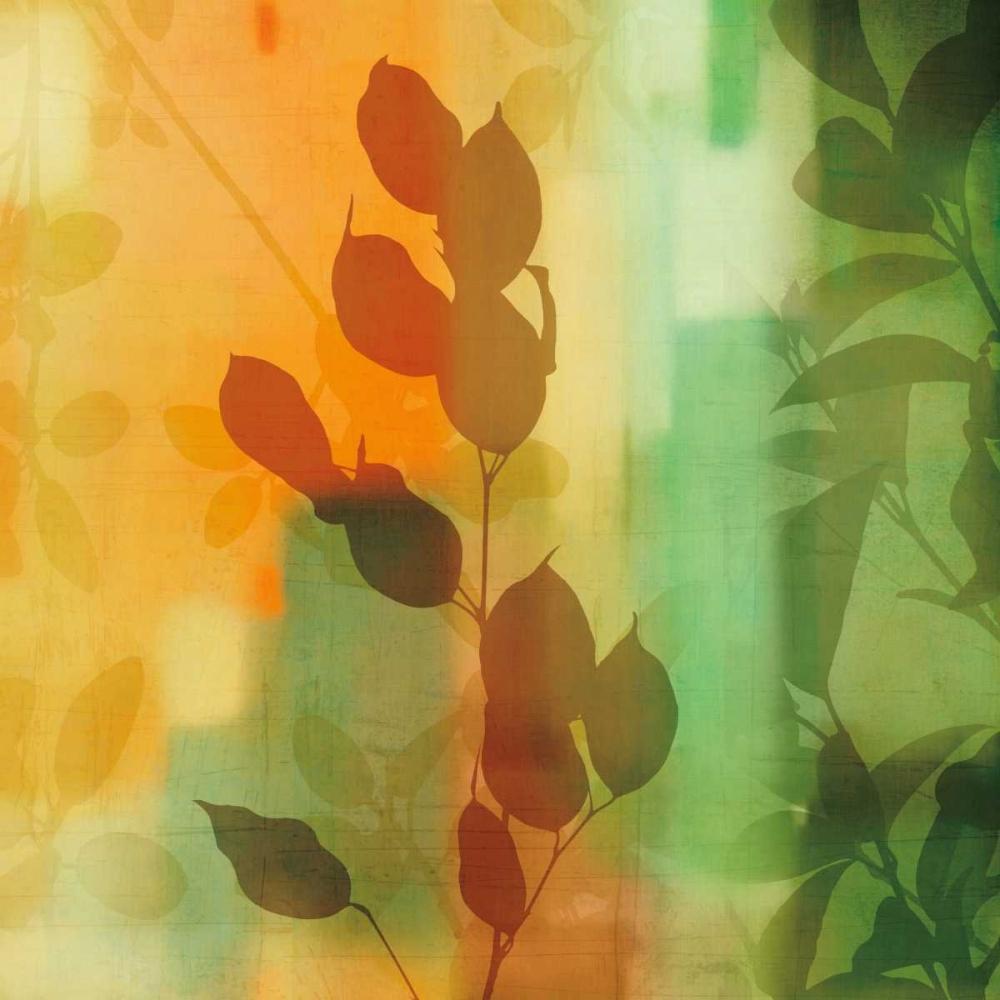 konfigurieren des Kunstdrucks in Wunschgröße Natures Glow II von Donovan, Chris