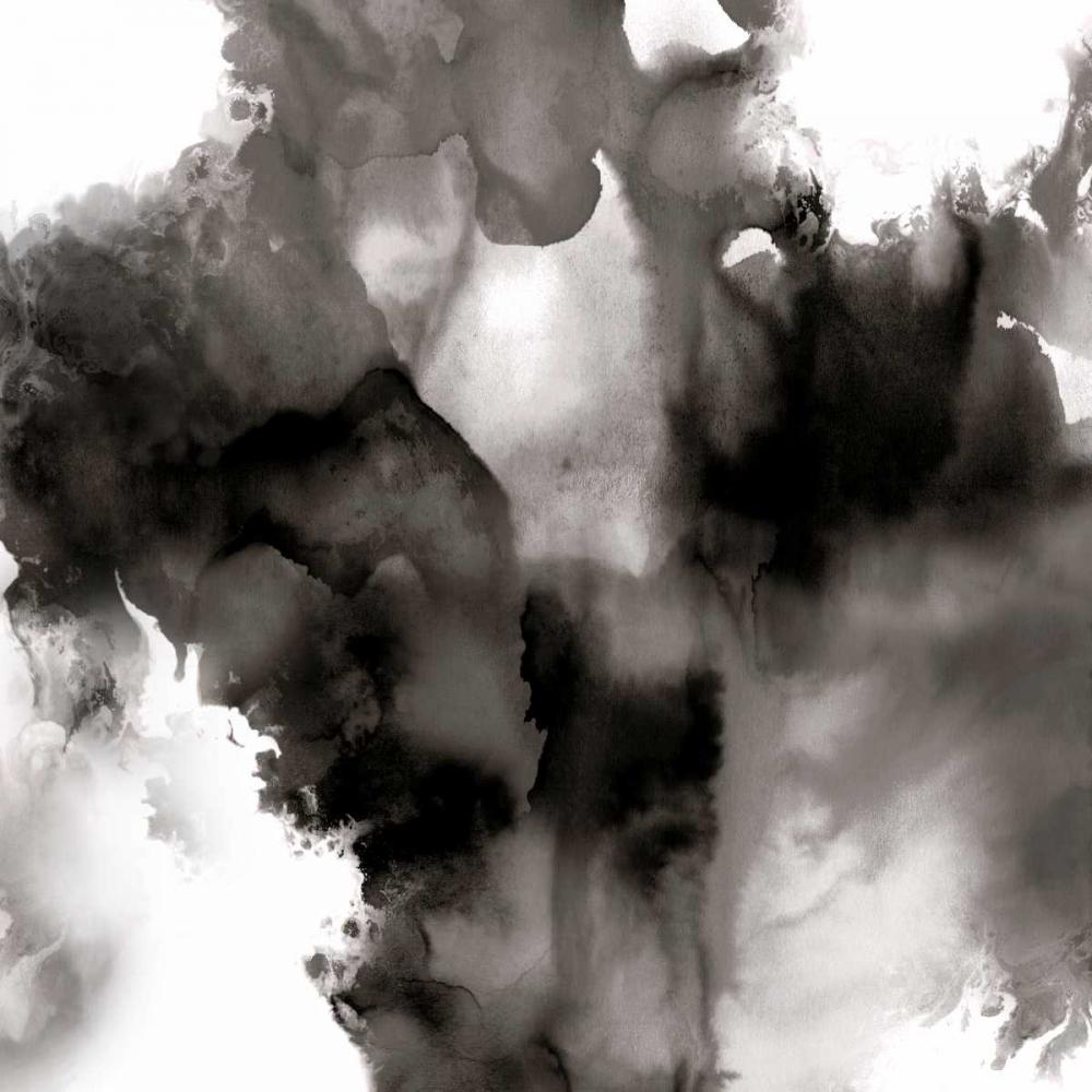 konfigurieren des Kunstdrucks in Wunschgröße Derive Noir II von Hudson, Daniela