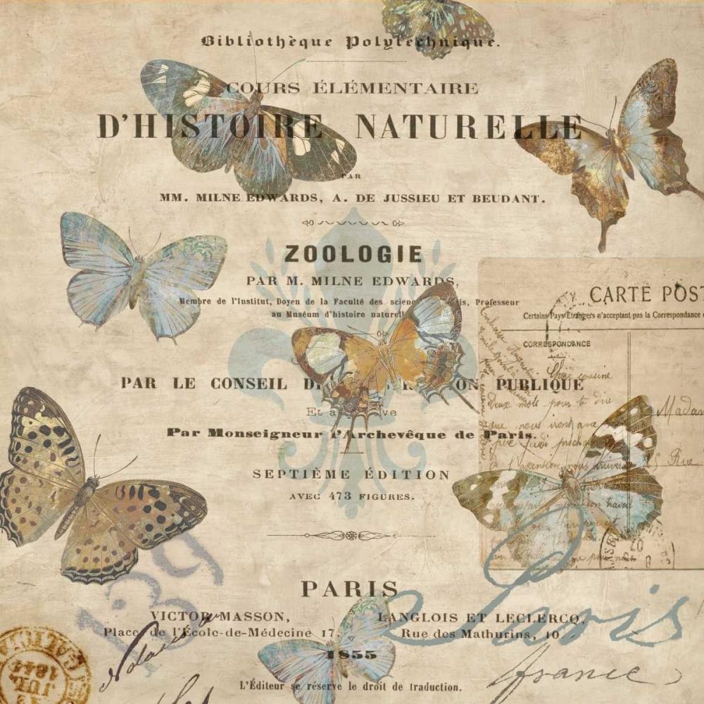 konfigurieren des Kunstdrucks in Wunschgröße Papillon II von Devellier, Deborah