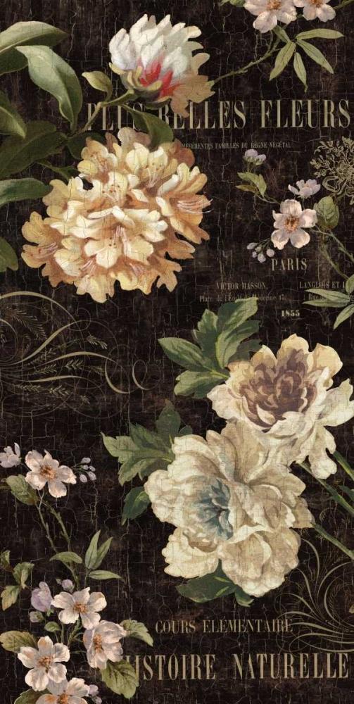 konfigurieren des Kunstdrucks in Wunschgröße Fleurs Antique II von Devellier, Deborah