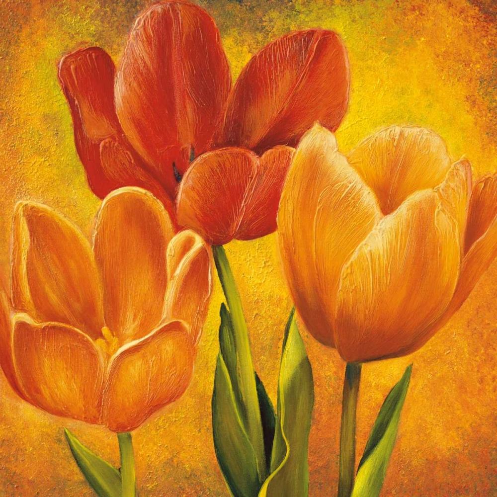konfigurieren des Kunstdrucks in Wunschgröße Orange Tulips I von Pedersen, David