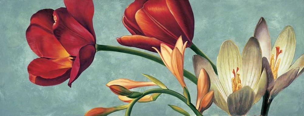 konfigurieren des Kunstdrucks in Wunschgröße Luce e colore I von Barberini, Eva