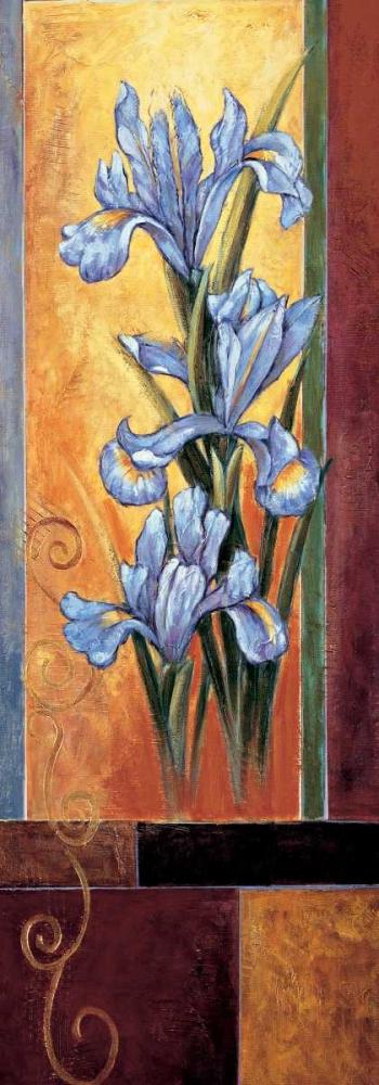 konfigurieren des Kunstdrucks in Wunschgröße Iris von Deveraux, Jill