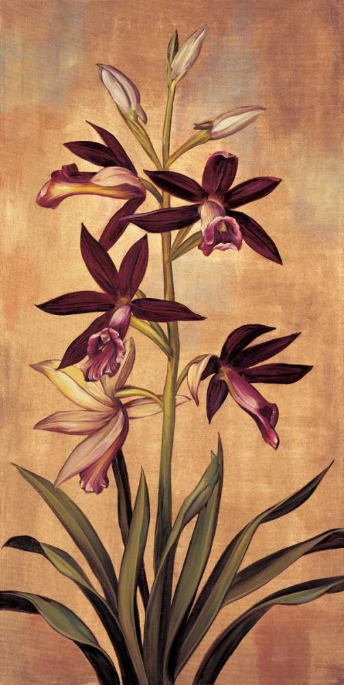 konfigurieren des Kunstdrucks in Wunschgröße Burgundy Orchid von Deveraux, Jill