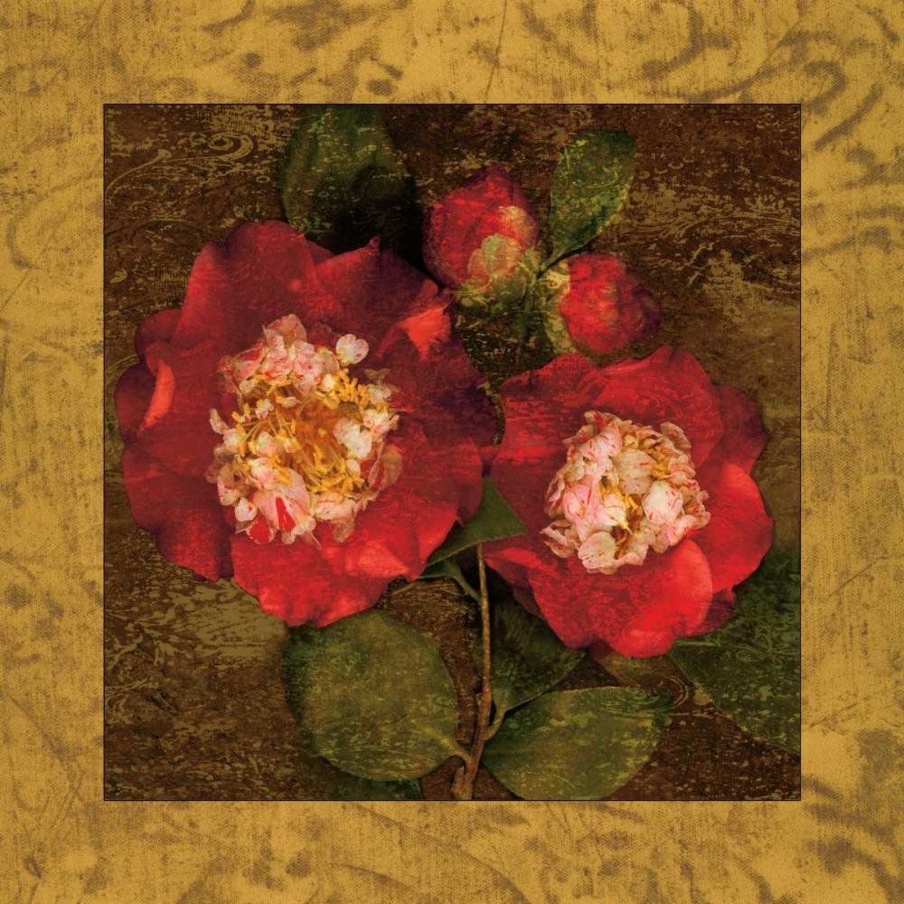 konfigurieren des Kunstdrucks in Wunschgröße Red Camellias II von Seba, John