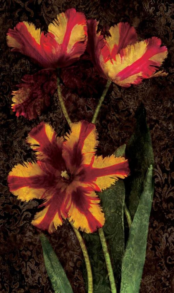 konfigurieren des Kunstdrucks in Wunschgröße Decorative Tulips I von Seba, John